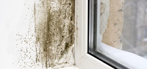 Condensation Image1
